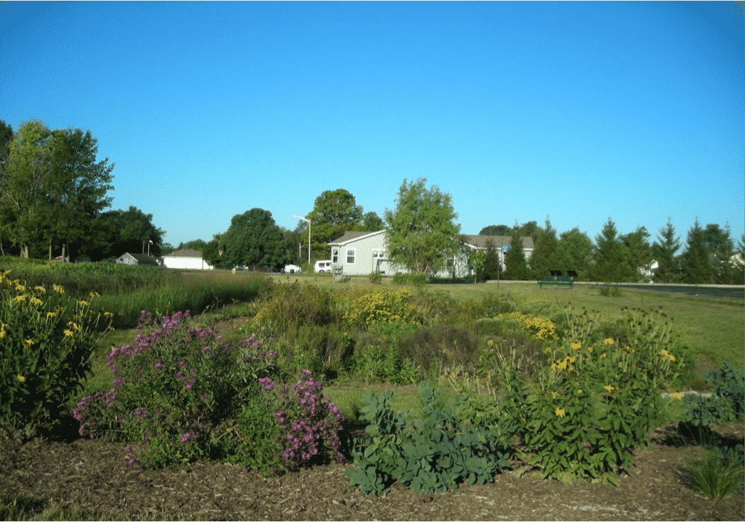 """""""Garden"""